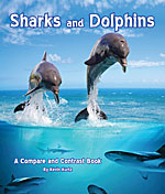 BB_Sharks-and-Dolphins