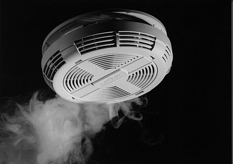 Smoke Alarms Times Publishing Group Inc tpgonlinedaily.com