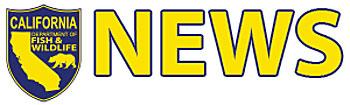 Free FishingTimes Publishing Group Inc tpgonlinedaily.com