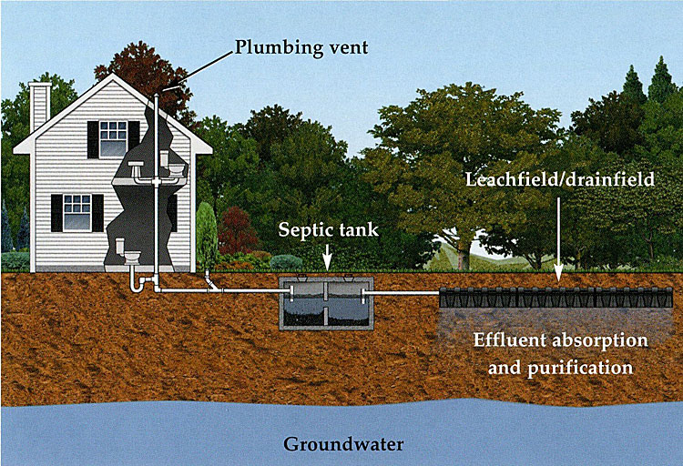 Septic Systems Times Publishing Group Inc tpgonlinedaily.com