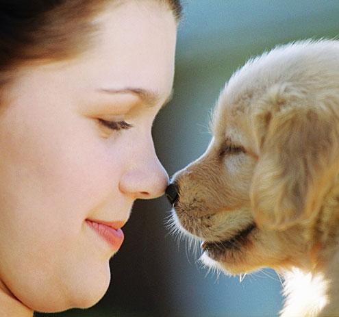 Having PetsTimes Publishing Group Inc tpgonlinedaily.com