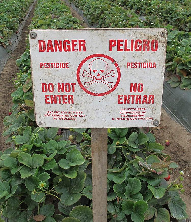Pesticide Exposure Times Publishing Group Inc tpgonlinedaily.com