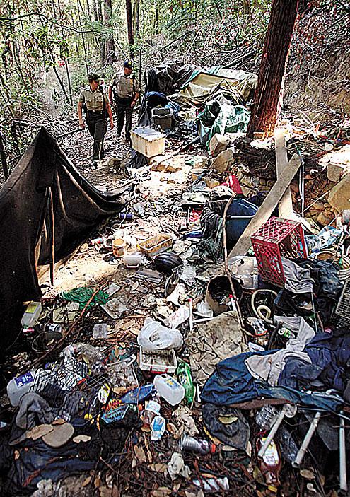 Homelessness Times Publishing Group Inc tpgonlinedaily.com