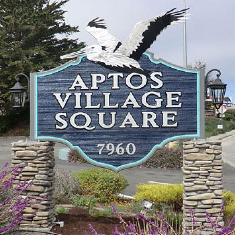 Aptos Village Square Times Publishing Group Inc tpgonlinedaily.com