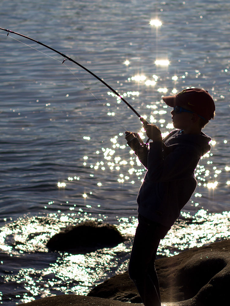 Fishing Times Publishing Group Inc tpgonlinedaily.com