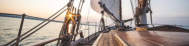 Sail Times Publishing Group Inc tpgonlinedaily.com